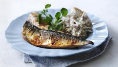 spiced_mackerel_with_05813_16x9
