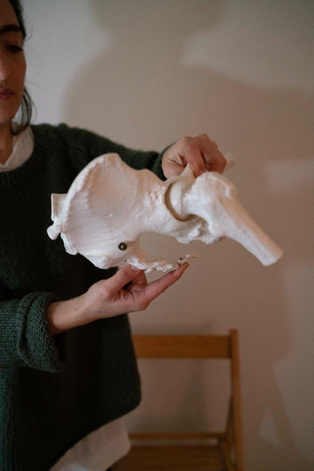 Tailbone In .jpg